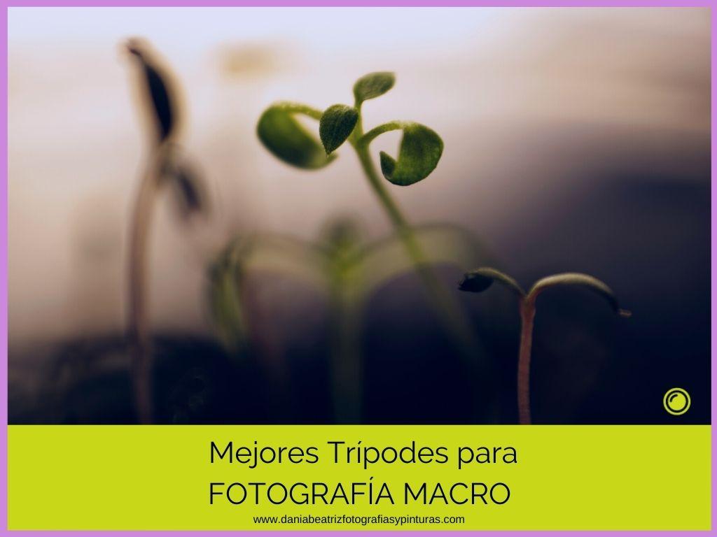 Trípodes-recomendados-para-fotografía-según-uso-y-presupuesto