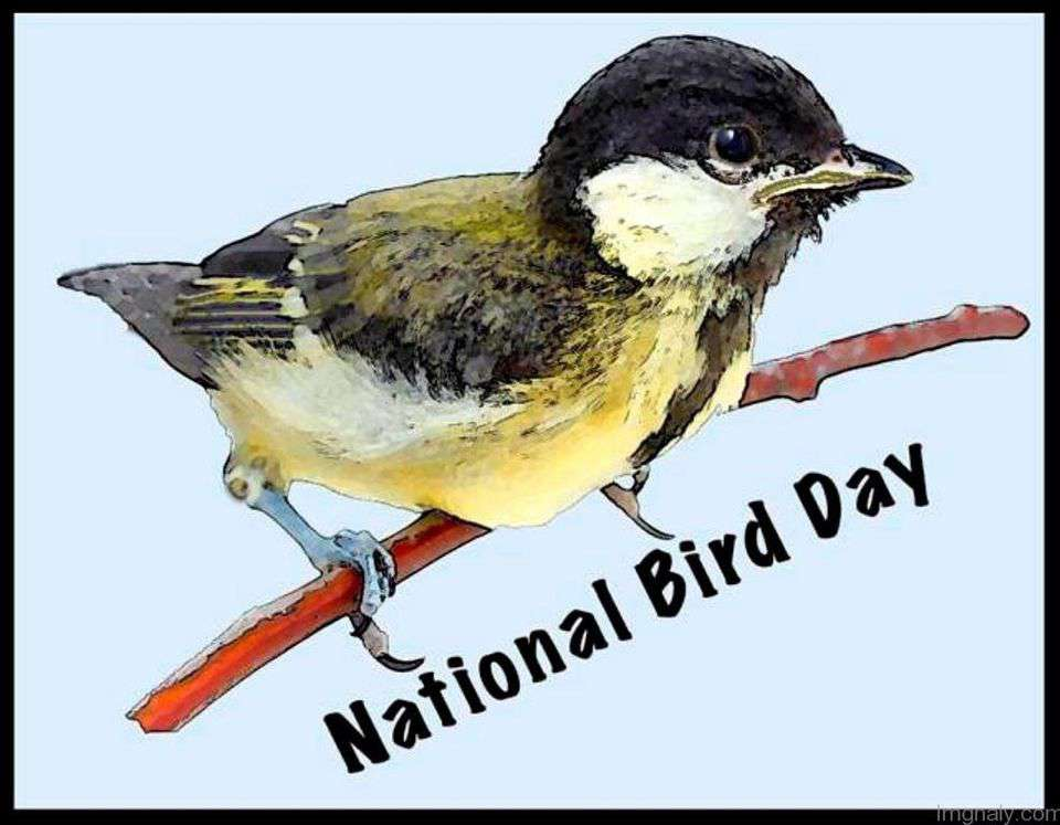 National Bird Day Wishes Awesome Picture