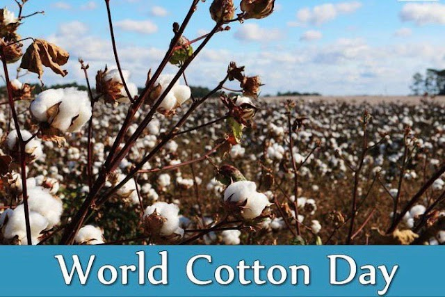 World Cotton Day | October, 7
