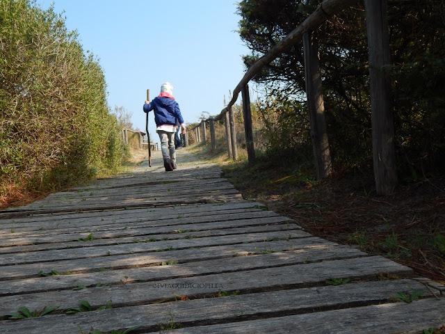 Passeggiando nel Giardino Botanico Litoraneo del Veneto