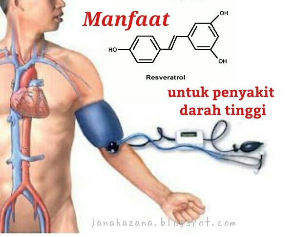 rawatan darah tinggi