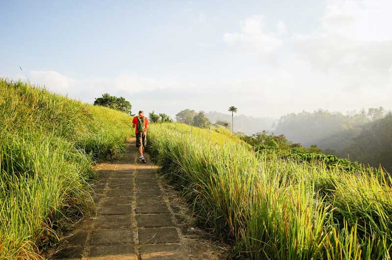 Rute Lokasi Campuhan Ridge Walk Ubud