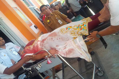 korban meninggal mobil honda City yang ditembaki polisi lubuklinggau