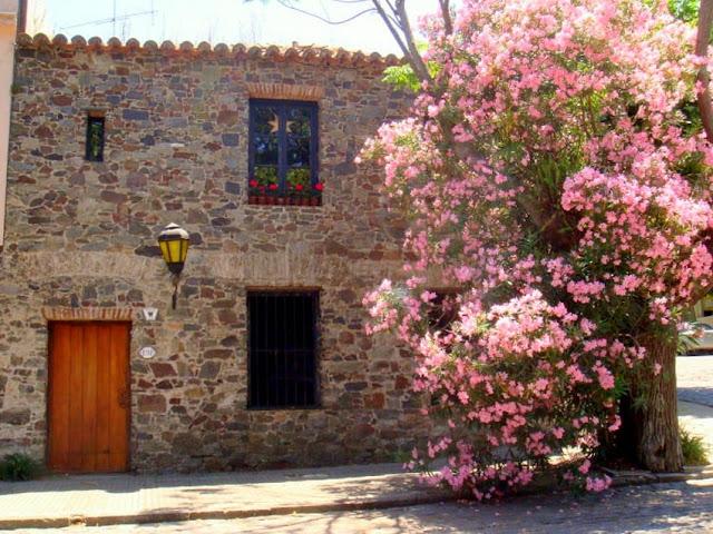 colonia sacramento buenos aires uruguai