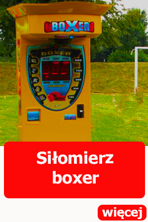silomierz boxer