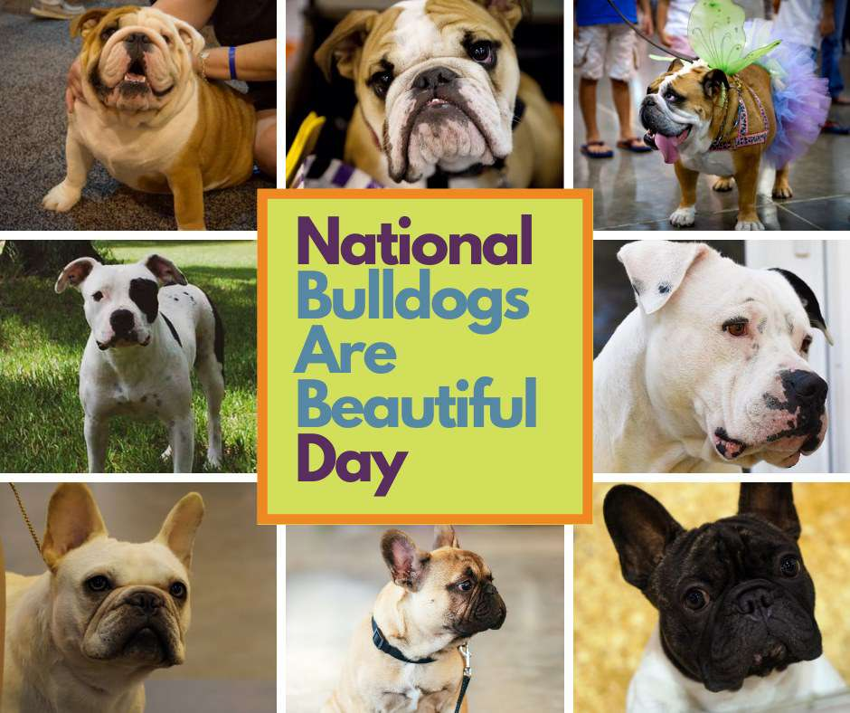 National Bulldogs Are Beautiful Day Wishes For Facebook