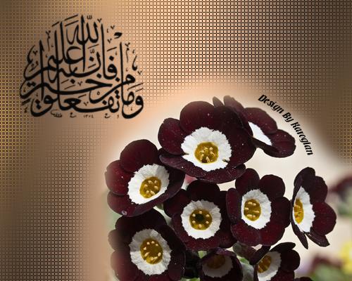 [Resim: islamiresim-jhodfsdfsdfsdf.png]