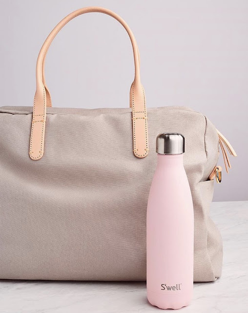 S'well water bottle pink with purse