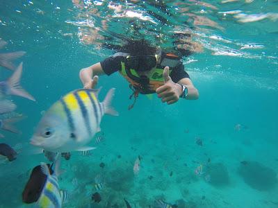 Snorkling di Rubiah
