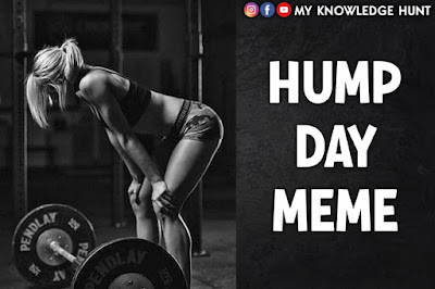 Hilarious Happy Hump Day Memes
