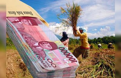 Kementerian Keuangan mempersoalkan pemberian informasi yang lemah dari pemerintah daerah.