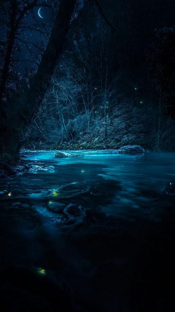 HD Wallpaper Beautiful Night Forest River Moon