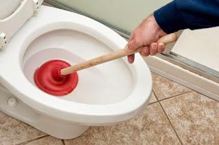 top sedot wc