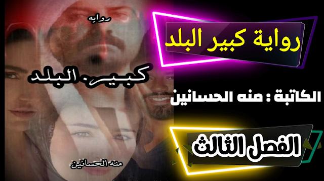 رواية كبير البلد للكاتبه منه الحسانين - الفصل الثالث