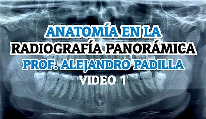 RADIOLOGÍA ORAL: Anatomía en la Radiografía Panorámica - Prof. Alejandro Padilla Parte 1