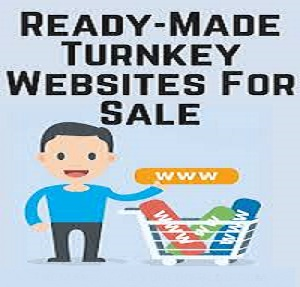 READY MONETIZED WEBSITES