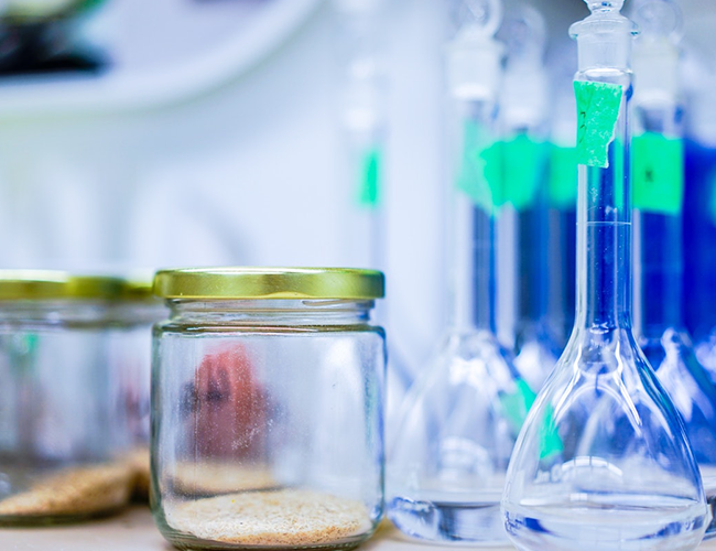 The Principles of Biotechnology and its concepts
