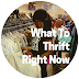 5 Things to Thrift Now