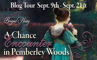 Blog Tour: A Chance Encounter in Pemberley Woods by Brigid Huey