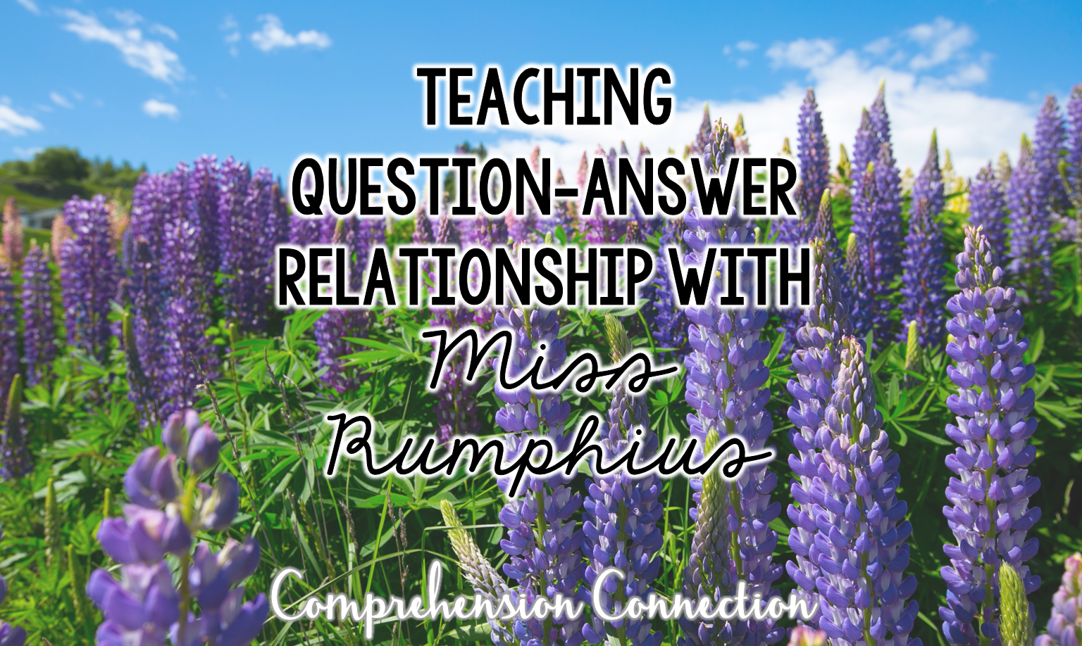 Teaching Question Answer Relationships With Miss Rumphius