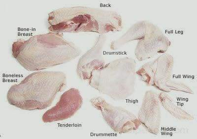 kenali nama bahagian ayam