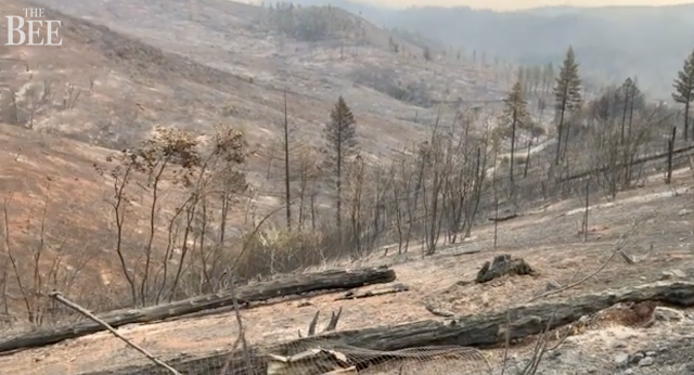 Fire and police fought Camp Fire as blaze hit home: More than 90 first responders lost houses