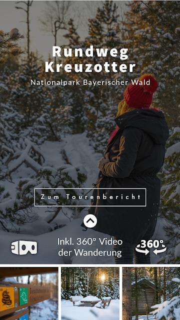 Rundweg Kreuzotter  Hochmoor Filzwald  Kloster Filz  Nationalpark Bayerischer Wald 32