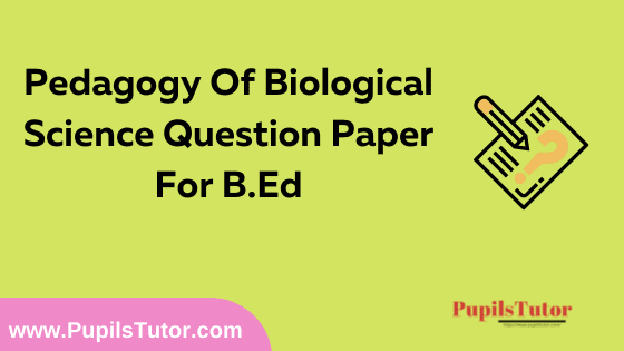 Pedagogy Of Biological Science Question Paper For B.Ed 1st And 2nd Year And All The 4 Semesters In English, Hindi And Marathi Medium Free Download PDF | Pedagogy Of Biological Science Question Paper In English | Pedagogy Of Biological Science Question Paper In Hindi | Pedagogy Of Biological Science Question Paper In Marathi