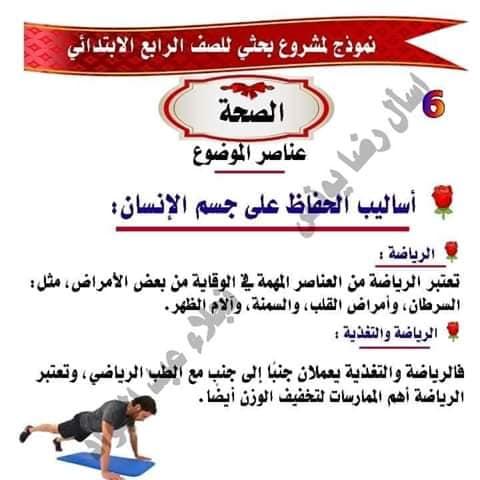 مشروع بحث عن الصحه للصف الرابع لميس نجلاء عبد الجواد 6