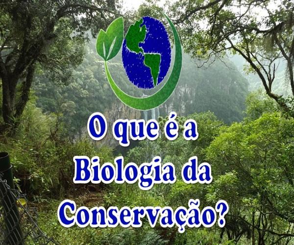 https://www.bioorbis.org/2015/08/biologia-da-conservacao-e-prevencao-da.html