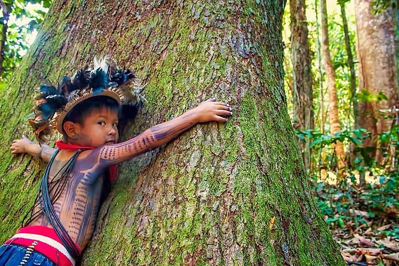 Justiça ordena ANM a nega pedidos de mineração em terras indígenas no oeste do Pará