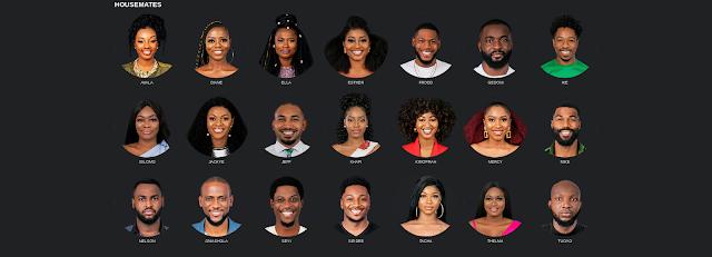 Meet BBNaija 2019 All 21 Housemates