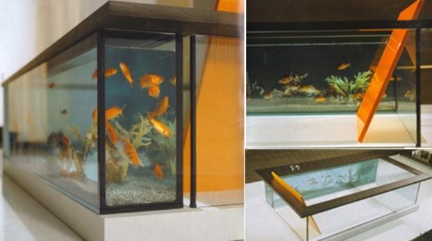 best aquarium design for home