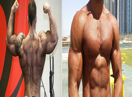 Compound Movements and Muscle Growth - bodybuilding110