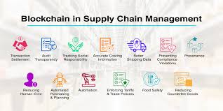 Viable Supply Chain Management Demand-Pull