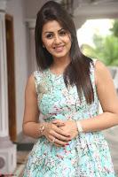 Nikki Galrani at Prema leela pelli gola trailer Launch ~  Exclusive 099.JPG