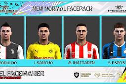 New Normal Facepack 2020 - PES 2013