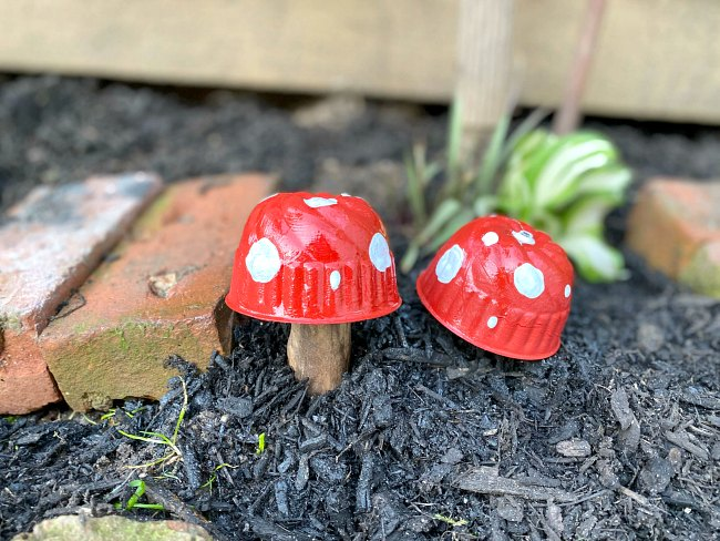 Two red and white garden mushrooms