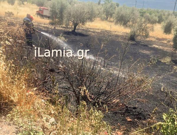 Αυλάκι : Πρόλαβαν την φωτιά οι Πυροσβέστες