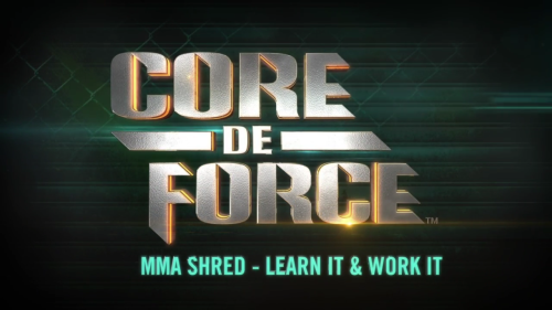 mma shred learn it e work it