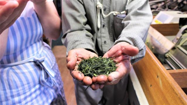 Les feuilles de thé séchées