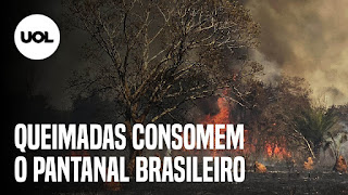 Wesley Safadão curado - Brasil supera 130 mil mortes por covid-19 - Pantanal focos de incêndio