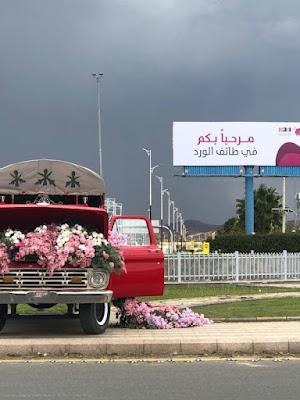 السياحة في الطائف و أهم 6 اماكن سياحيه في الطائف بالتفصيل