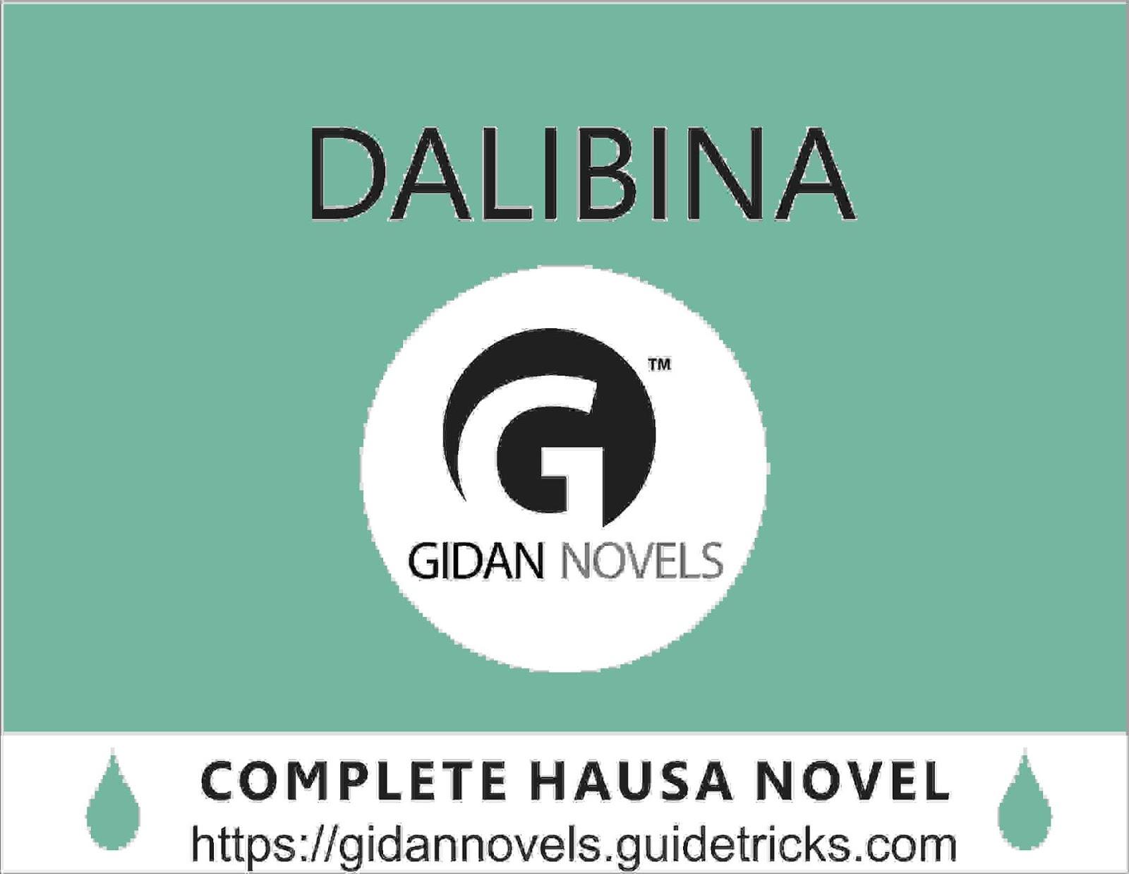 Gidan Novels
