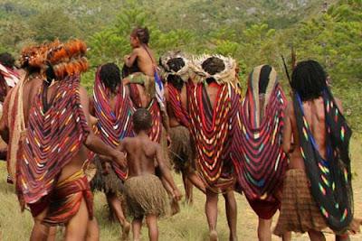 Pakaian Sali, Pakaian Adat Papua