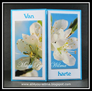 Een blauwe felicitatiekaart (Gate fold) met witte oplegvellen en een plaatje van bloesem van een oude kaart. A blue congratulation card (Gate fold) with white overlays and a picture of blossom from an old card.