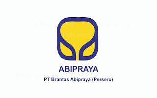 Lowongan Kerja PT Brantas Abipraya (Persero) Minimal Pendidikan S1 Berbagai Jurusan