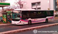 facebool.com/transportesonline