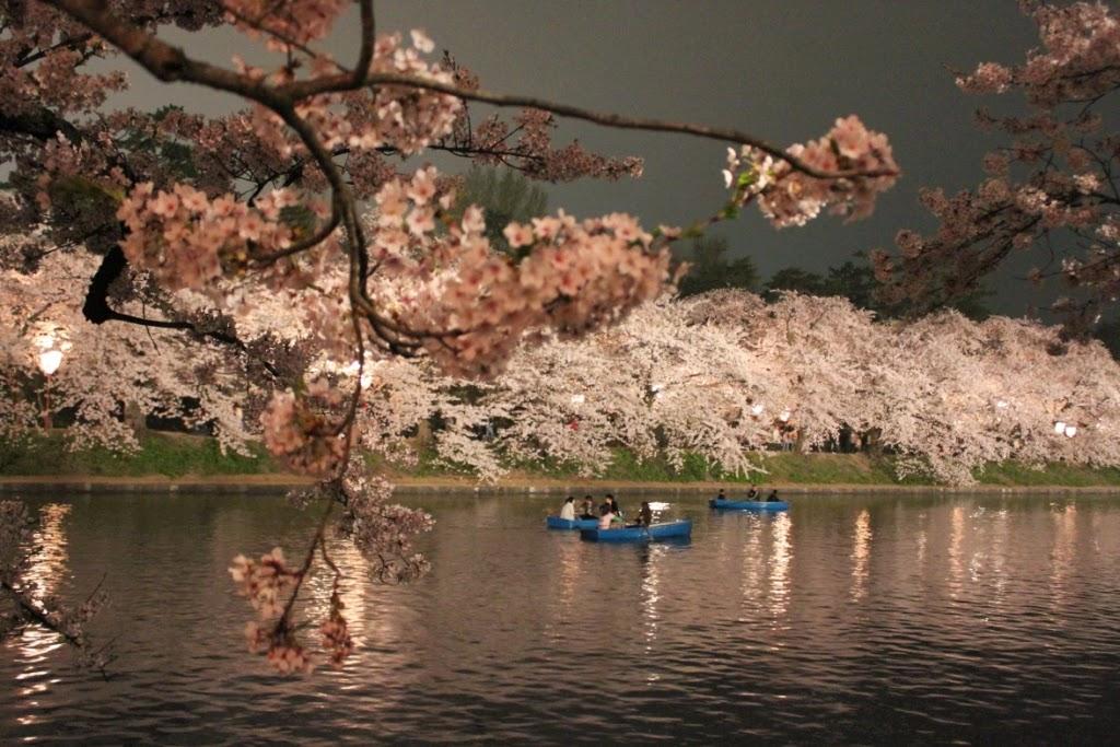 Hirosaki Cherry Blossom Festival Sakura Matsuri 弘前さくらまつり