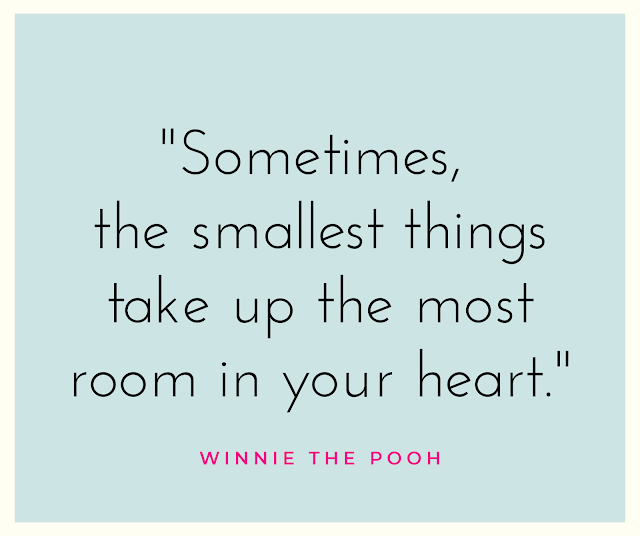 Winnie the Pooh smallest things quote